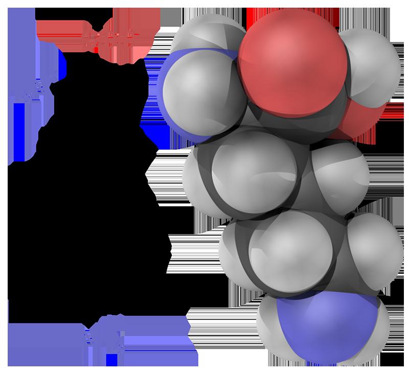 blog__inline--another-way-life-requires-carbon