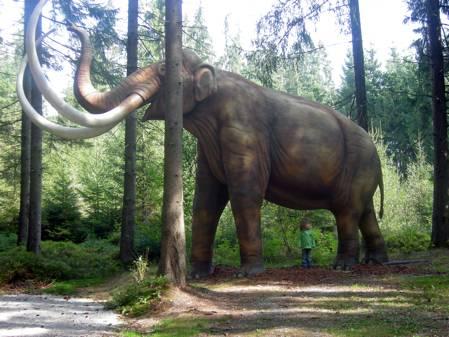 Mammoth Reconstruction