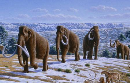tnrtb__inline--thank-god-for-the-extinction-of-mammoths-2