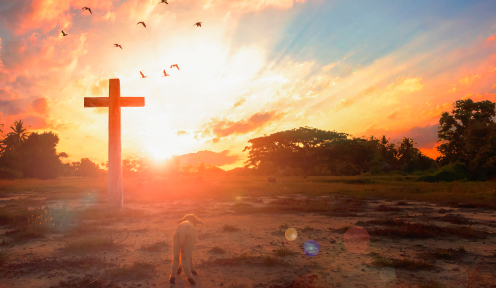 Straight Thinking: 20 Evidences for the Resurrection of Jesus, Part 2