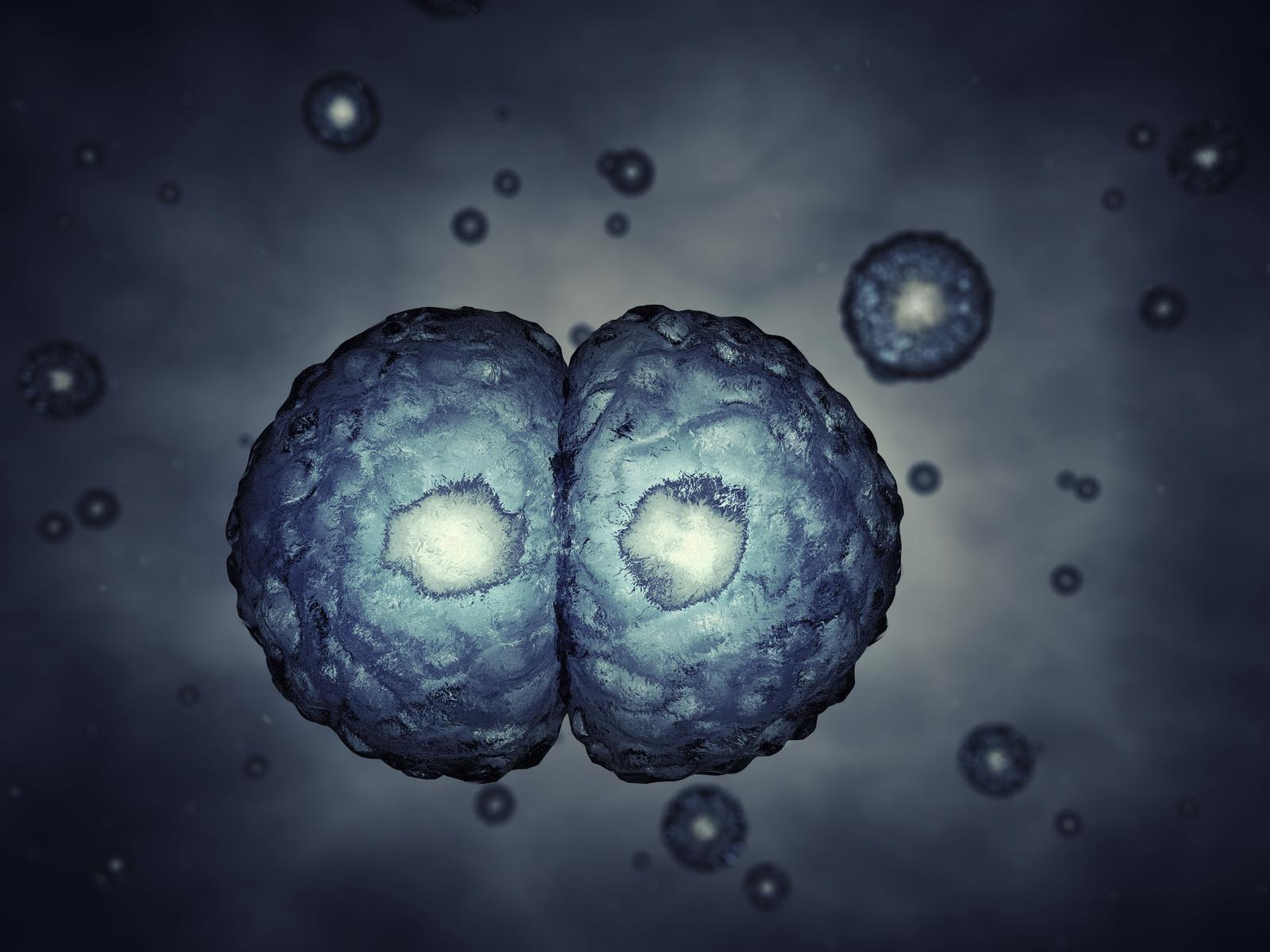 A Theology for Synthetic Biology, Part 2 (of 2)