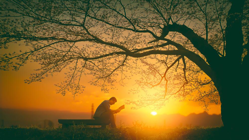 "Apologia Sophia: ""Apologetics Wisdom"" 5—Classics"