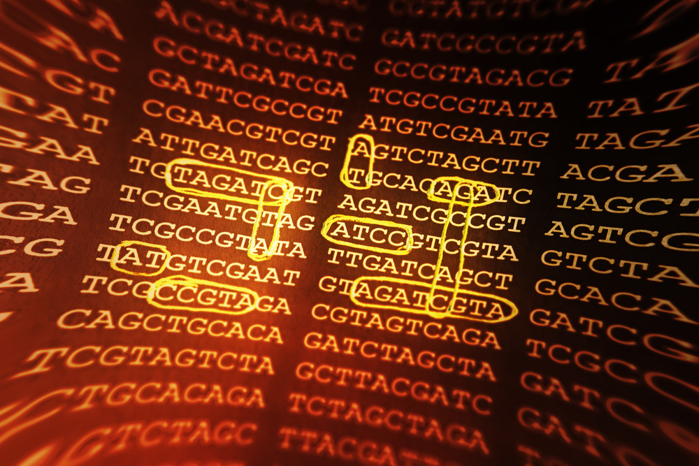 Biochemical Synonyms Restate the Case for a Creator