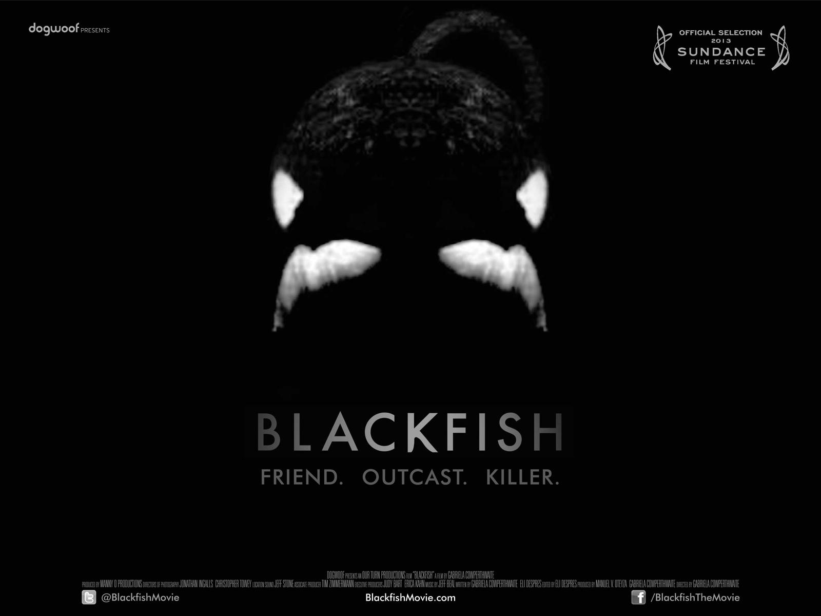 "Considering ""Blackfish"" and the Question of Mammals in Captivity"
