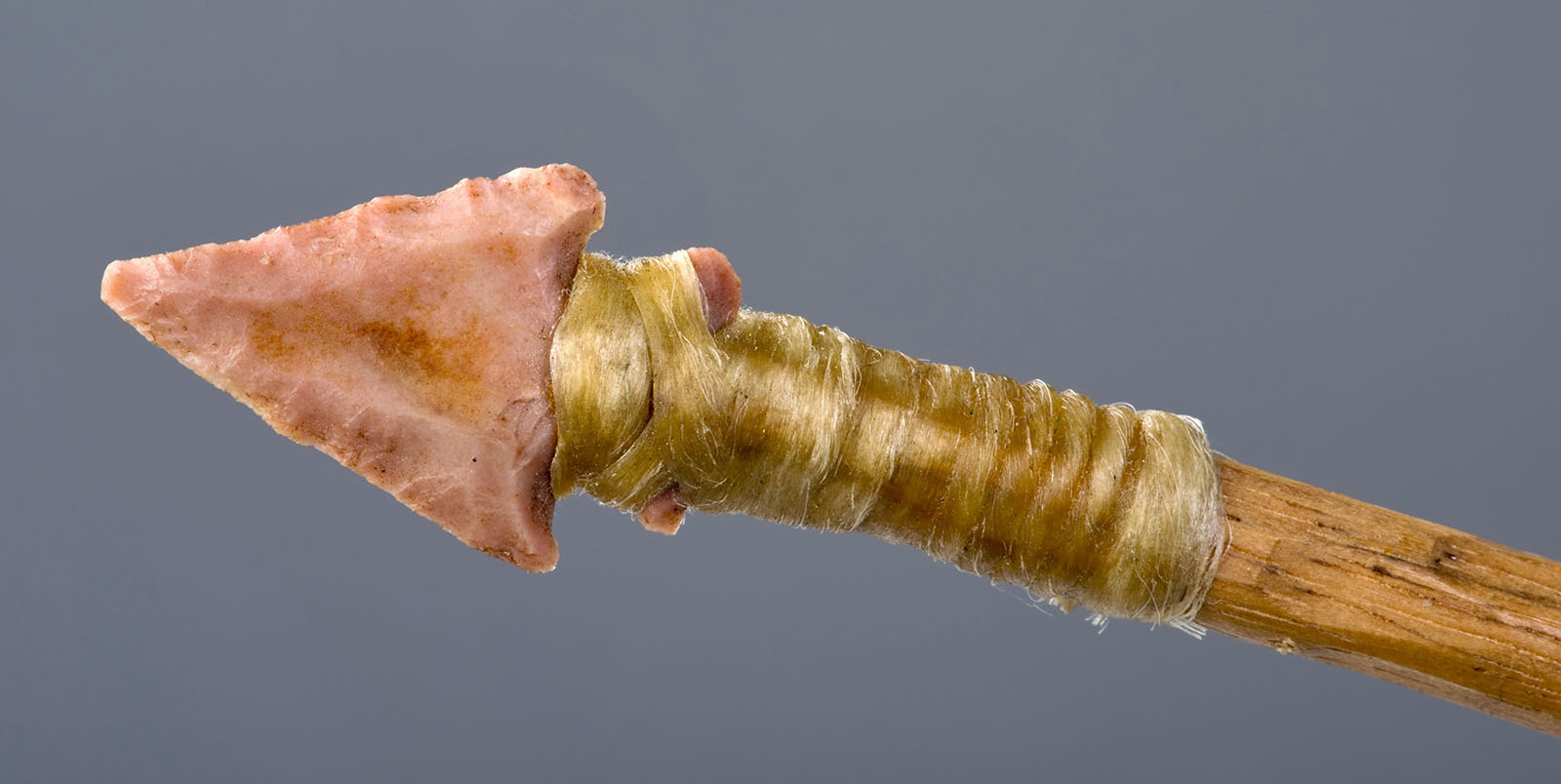 Did Neanderthals Make Glue?