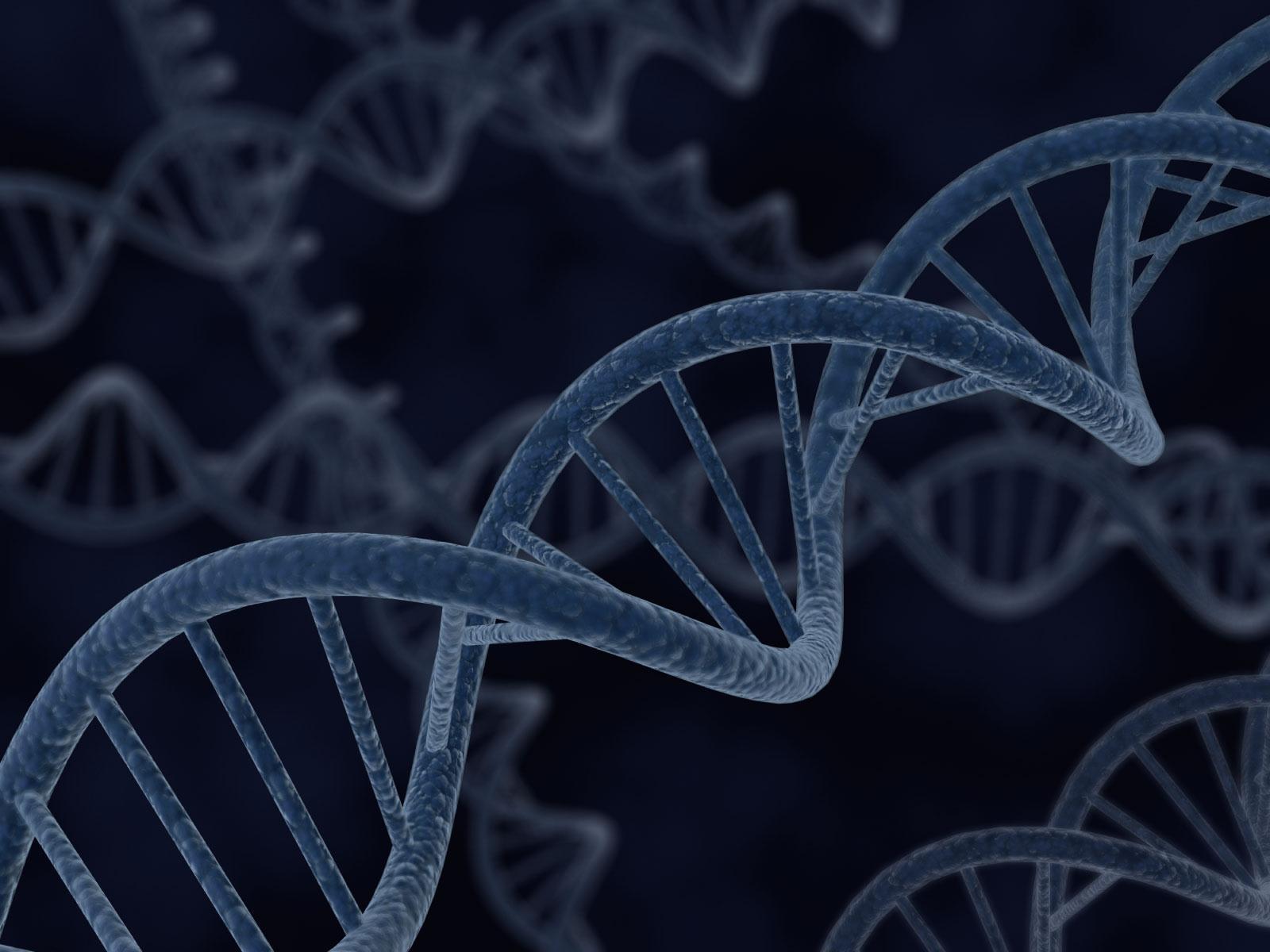 FYI: I.D. IN DNA Deciphering Design in the Genetic Code