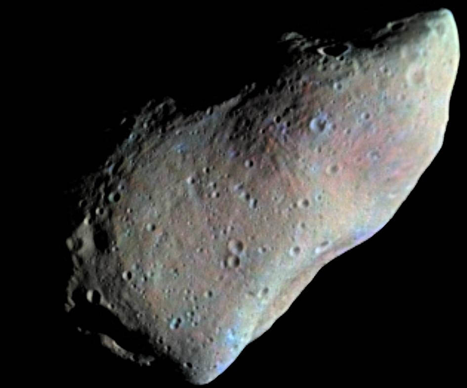 How the Flora Family of Asteroids Shaped the History of Life