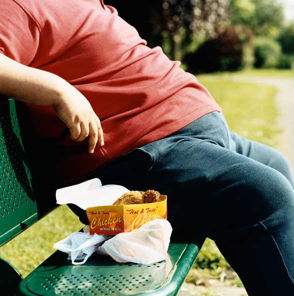 Latest Insights into Obesity Fatten the Case for Human Design