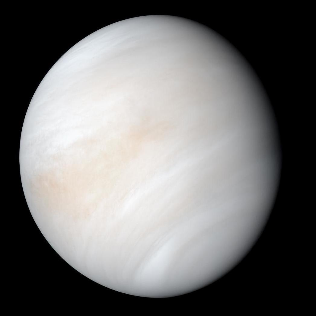 Is Life Possible in the Upper Clouds of Venus?