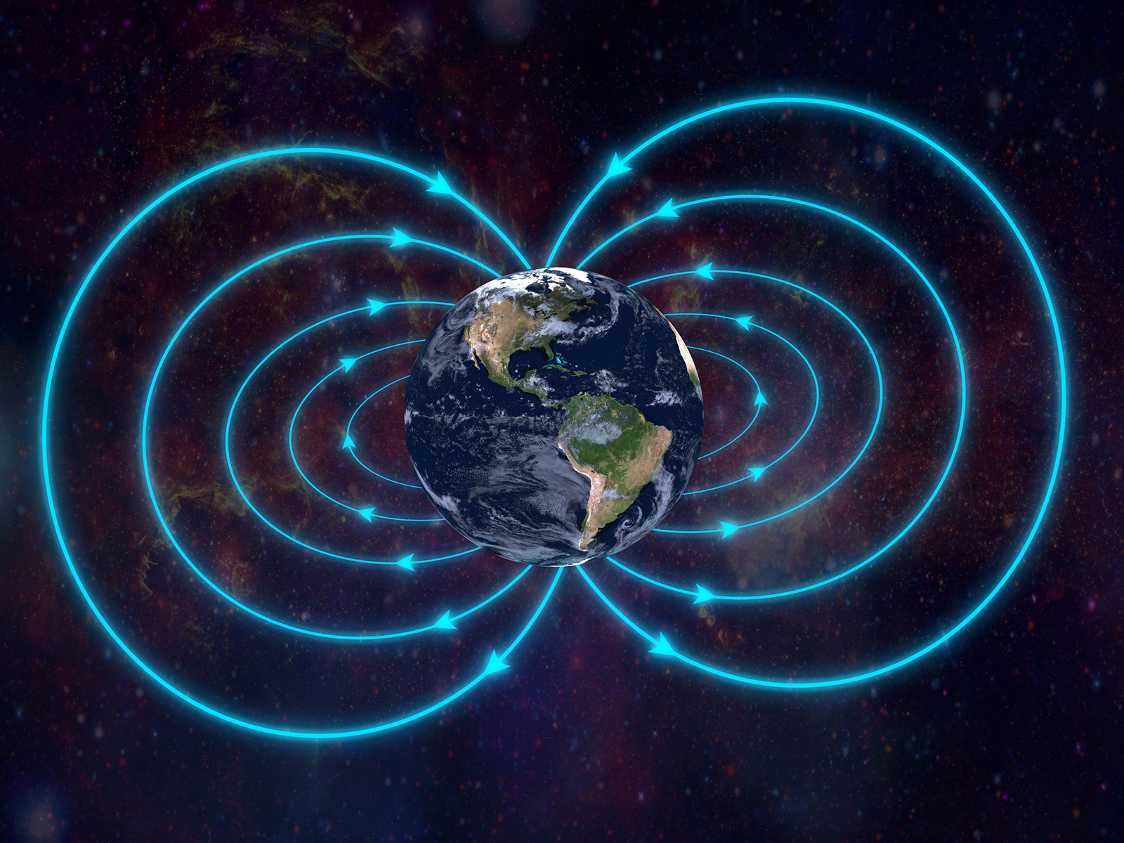 Life and Magnetic Field Variations