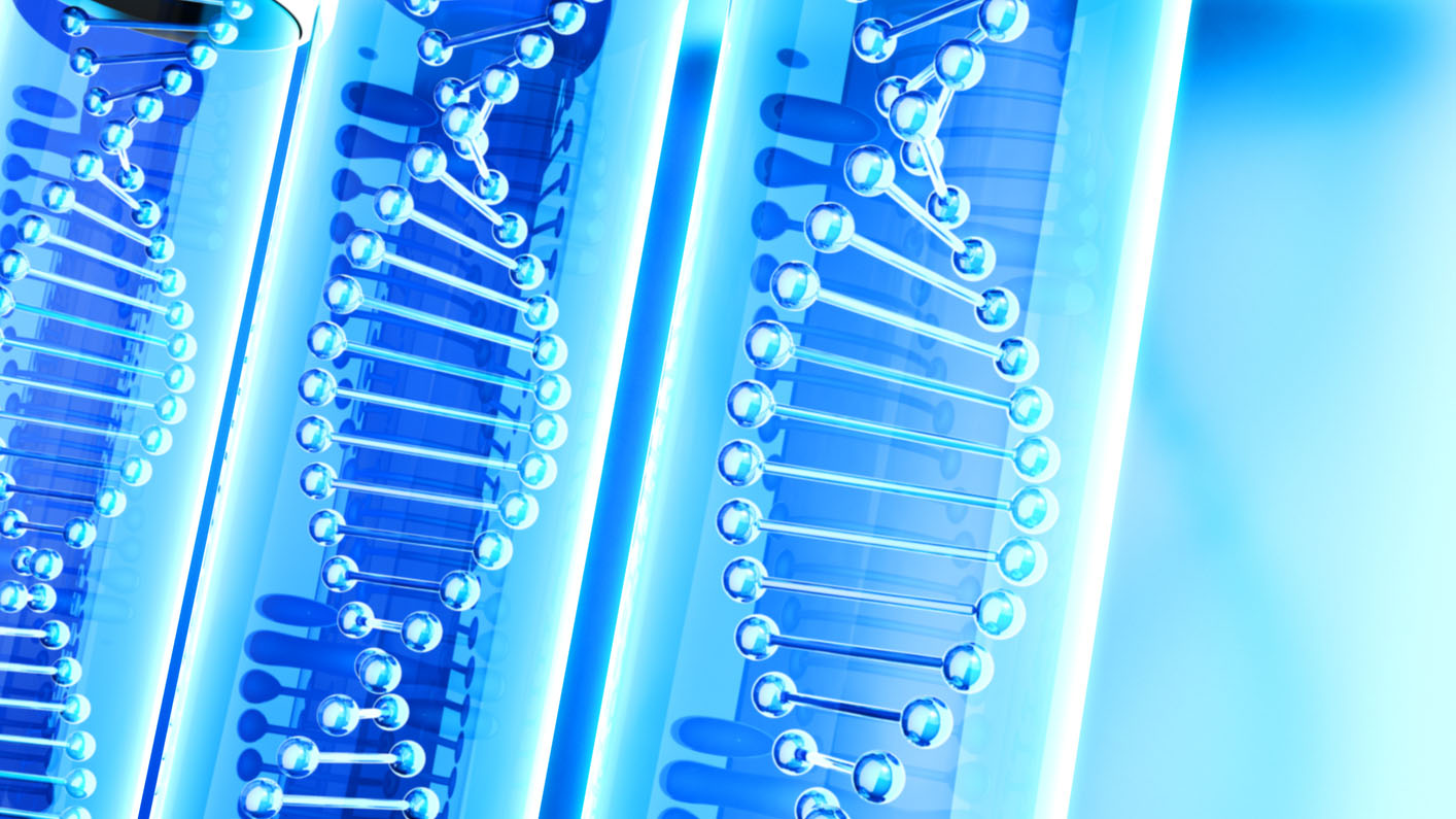 The Logic of DNA Replication Makes a Case for Intelligent Design