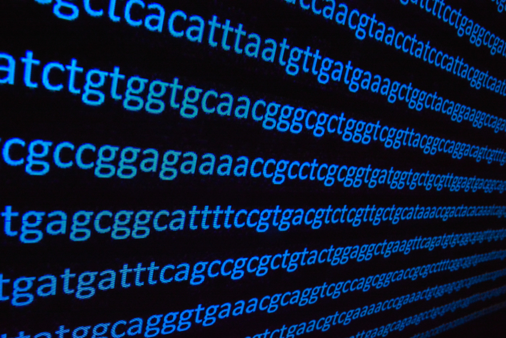 New Insights into Genetic Code Optimization Signal Creator's Handiwork