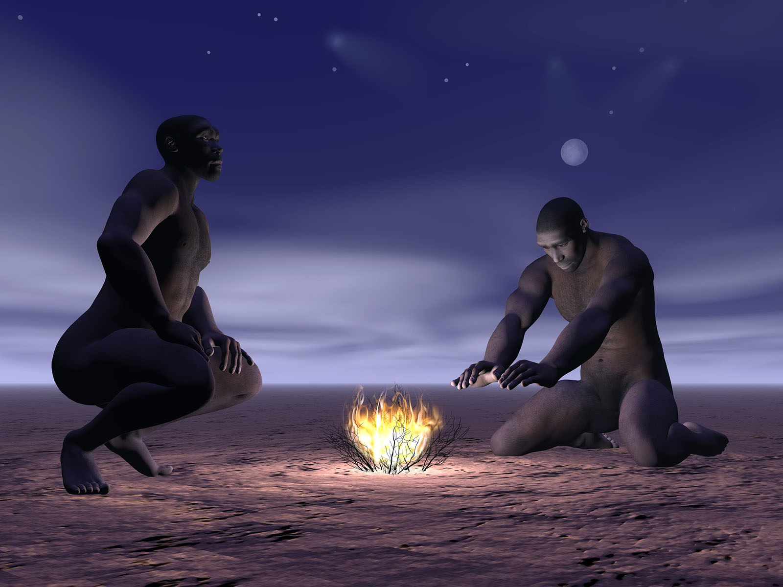 New Research Douses Claim that Neanderthals Mastered Fire