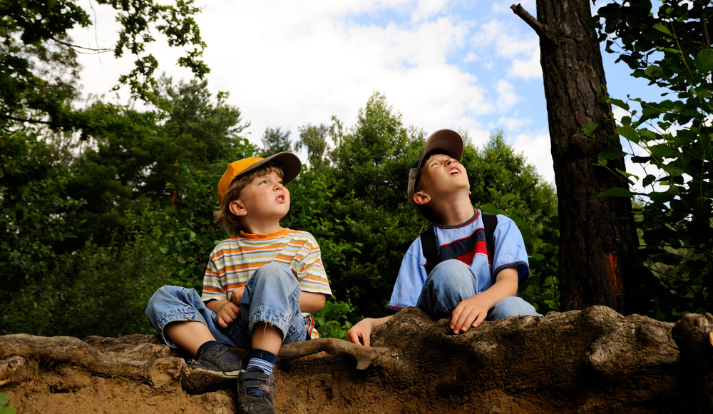 Playing in Forests Benefits Children