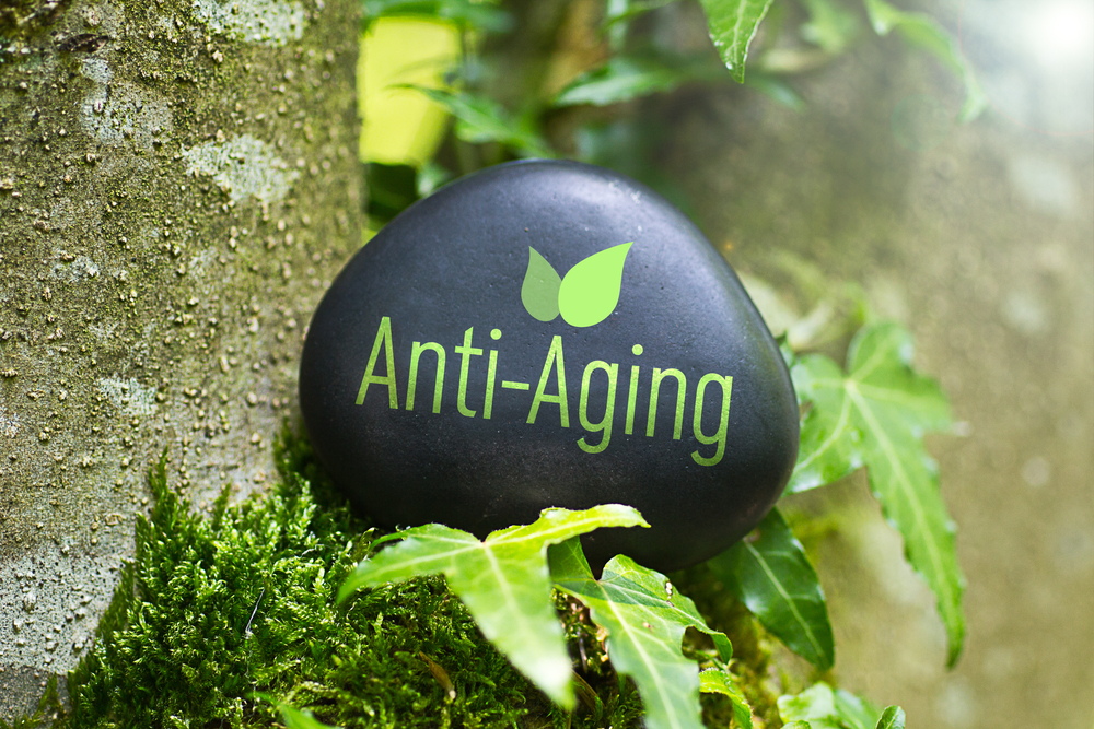 Scientists Reverse the Aging Process: Exploring the Theological Implications