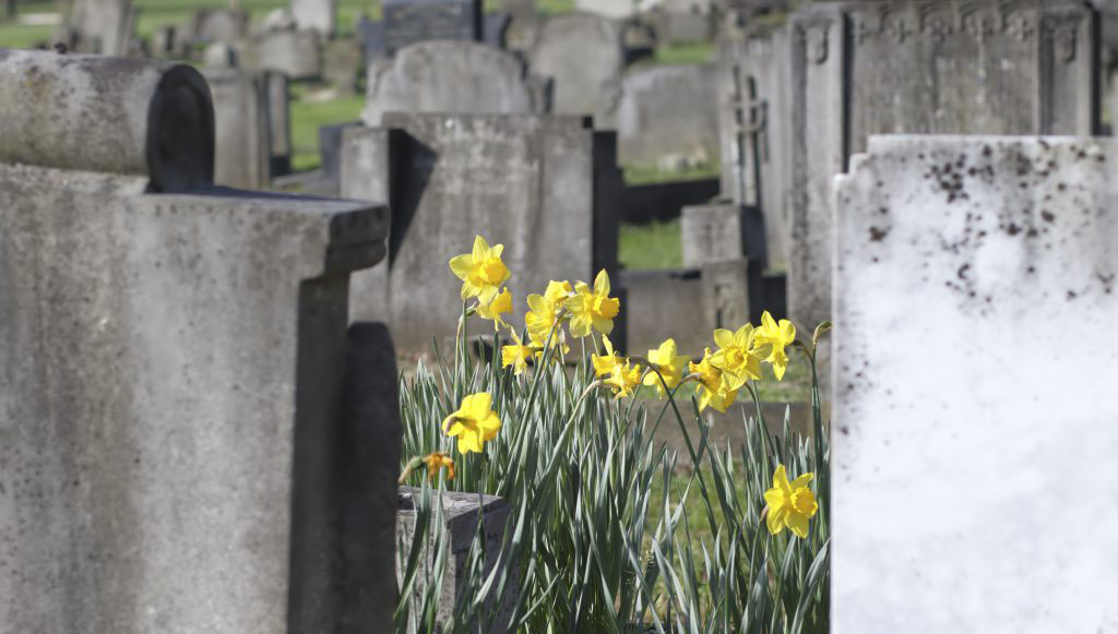 The Big Questions of Life: Death and Grief, Part 3