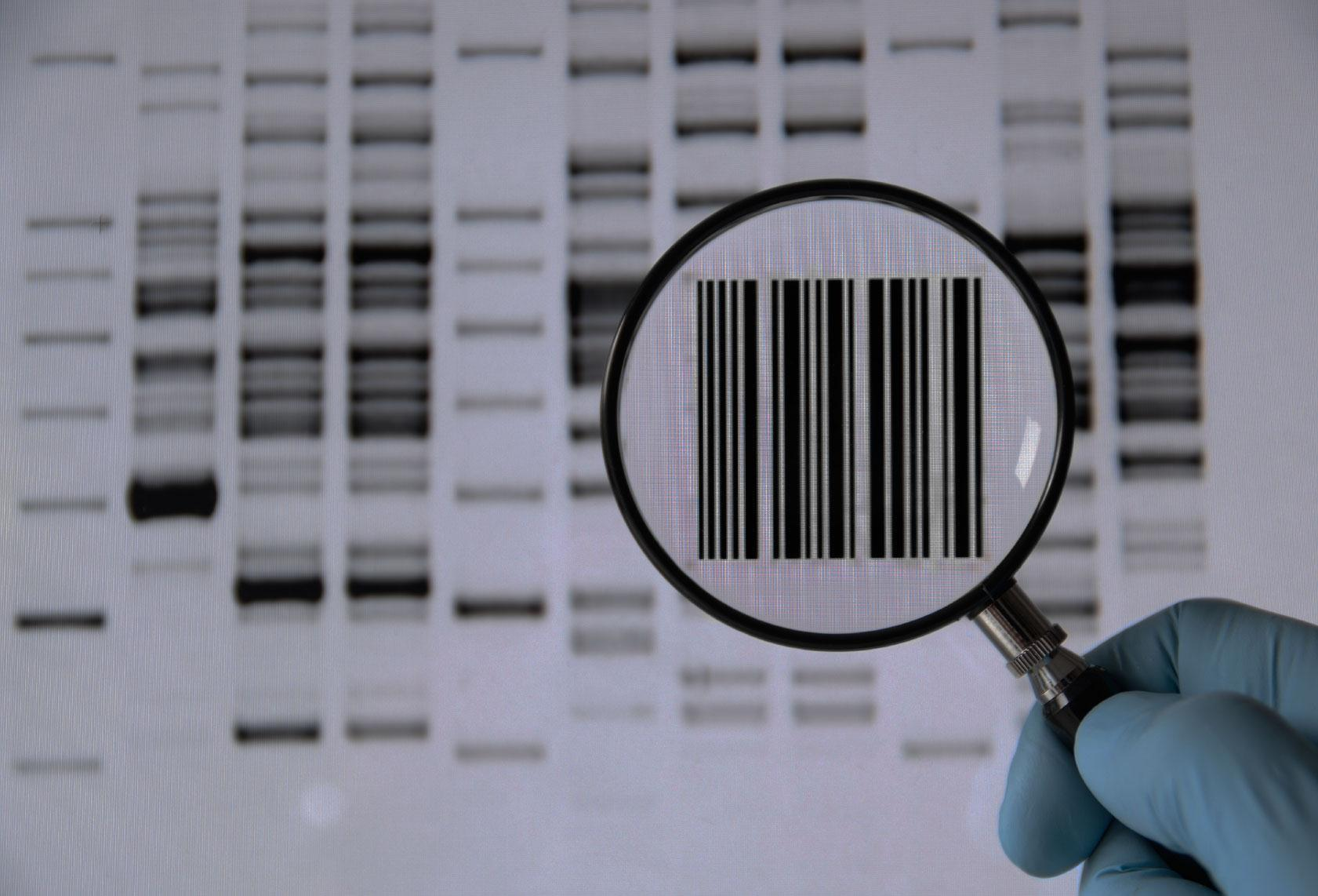 The Genetic Code: Simply the Best