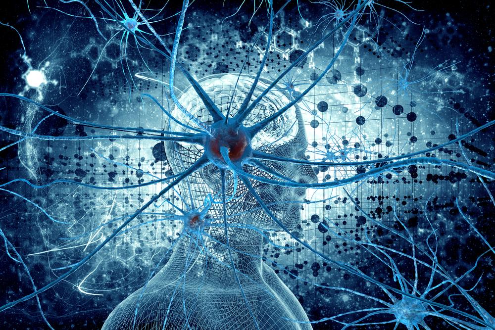 The Multiplexed Design of Neurons