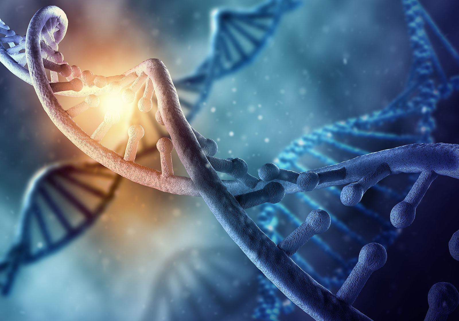 The Origin of Human Chromosome 2: Another Look