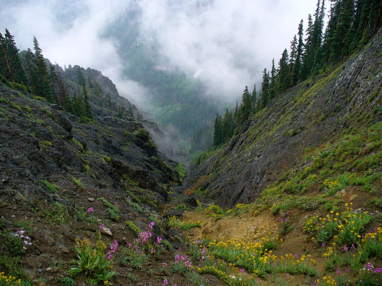 Weathered Bedrock: Key to Advanced Life on Earth