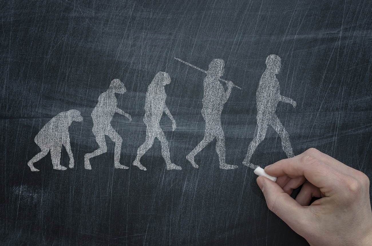 Were Humans Specially Created, or Did They Evolve from a Hominid?