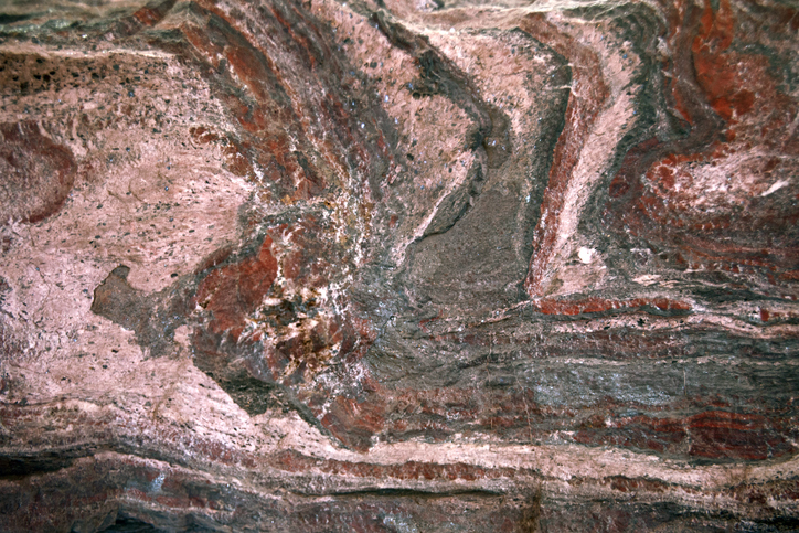 What Does the Discovery of Earth's Oldest Fossils Mean for Evolutionary Models?
