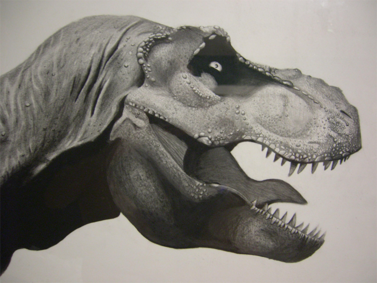 Dinosaur Blood?