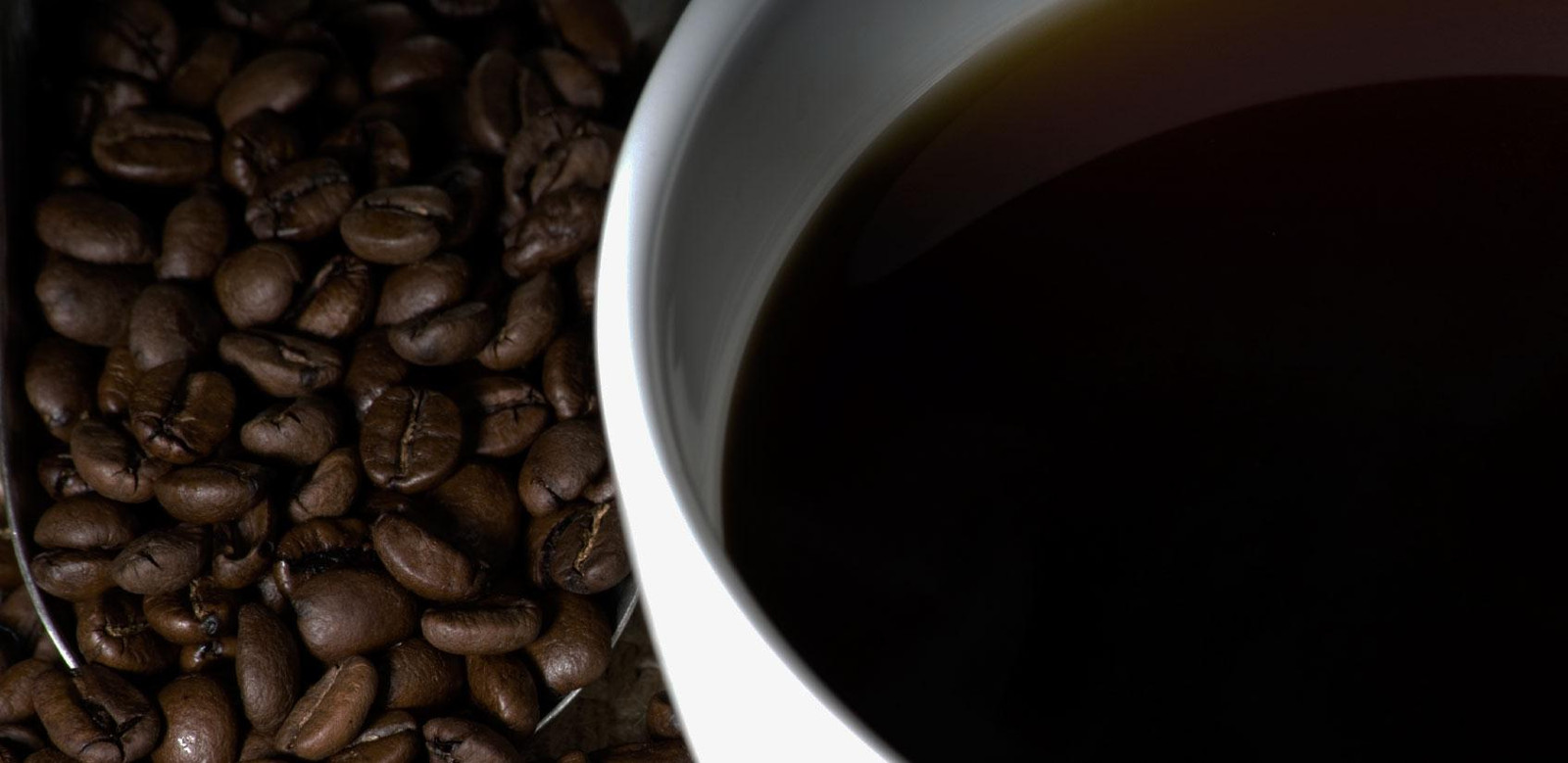 Does the Evolution of Caffeine-Eating Bacteria Stimulate the Case for Biological Evolution?