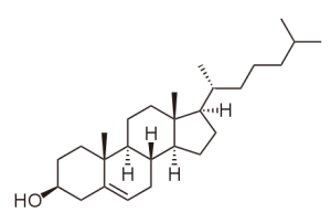 blog__inline--is-fossil-asscociated-cholesterol-2
