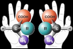 blog__inline--lifes-homochrial-molecules-1