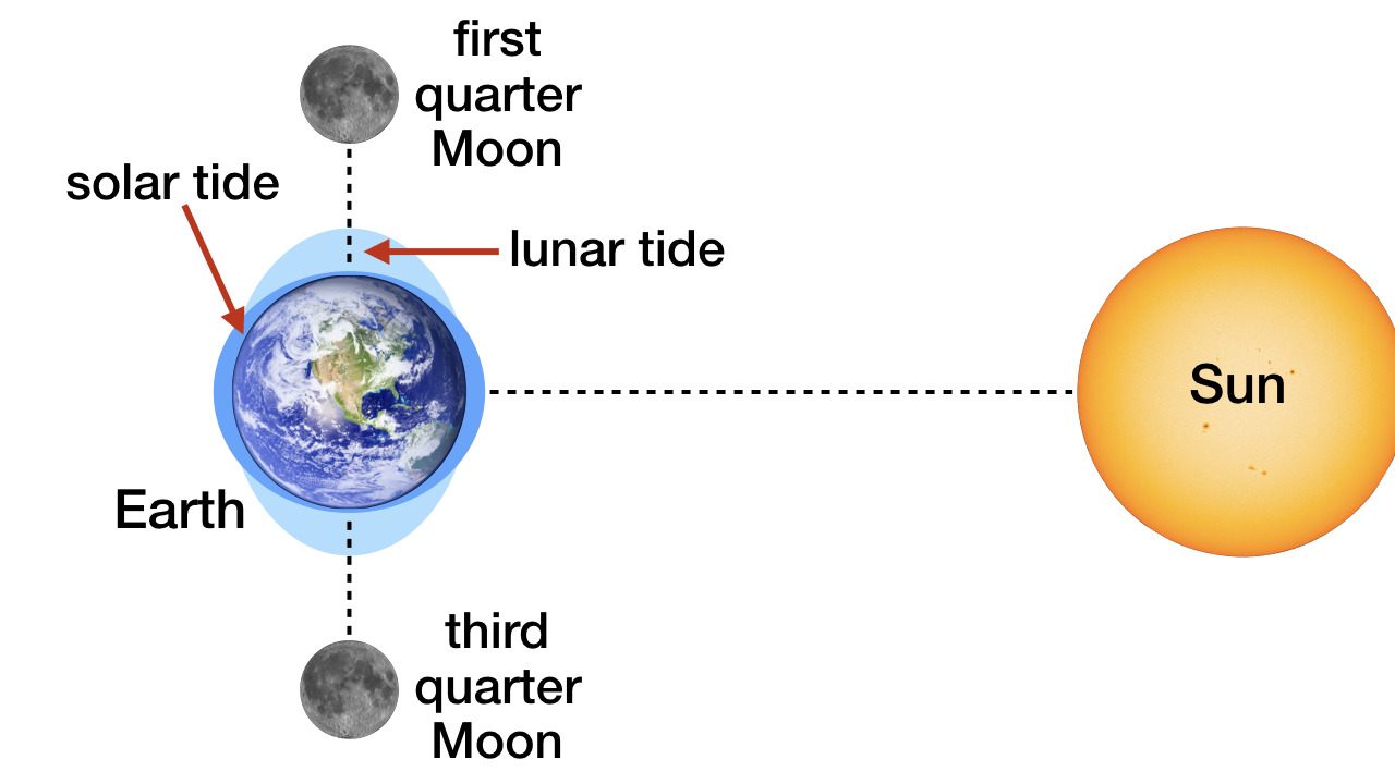 blog__inline--solar-and-lunar-tides-designed-2