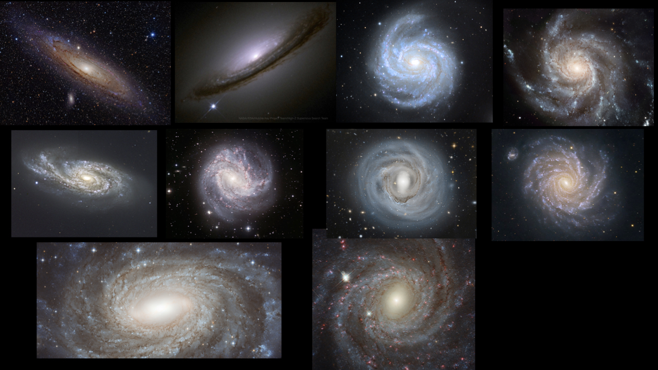 blog__inline--spiral-arms-designed-for-life-2