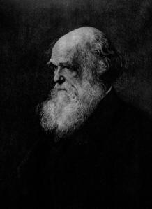 blog__inline—darwin-s-doubt