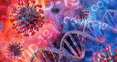 Understanding the Coronavirus (COVID-19)