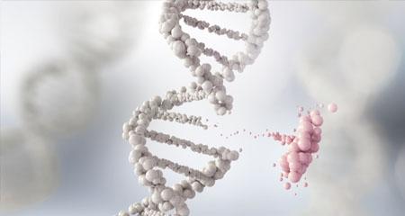 No Joke: New Pseudogene Function Smiles on the Case for Creation