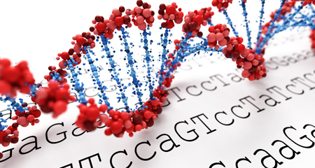 The Genetic Code: Optimized for Resource Conservation